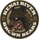 9456_kenai_river__brown_bears-primary-2013