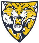 neaqua valley hockey logo