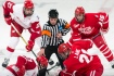 Terriers Wisconsin Hockey