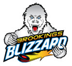 brookings blizzard
