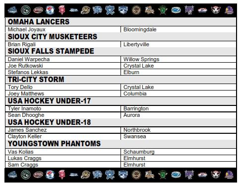 2015 USHL IL SKATERS_002