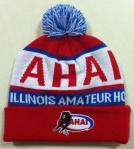 AHAI Hat B