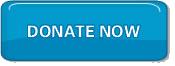 sub_donate_now_button