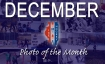 DECEMBER PHOTO OF THE MONTH_edited-1