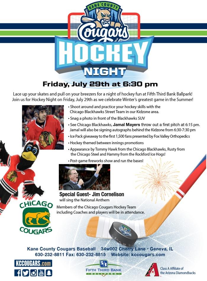 Hockey Night Flyer.jpg