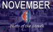 november-2016-photo-of-the-month