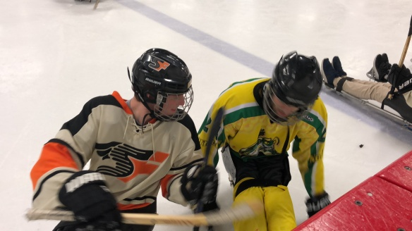 Skokie Amateur Hockey Association |