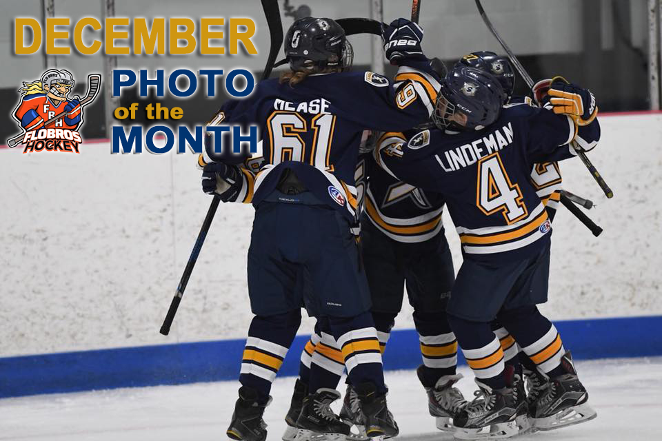 Submit Your Pics for AHAI s December Photo of the Month Contest! a82903bb2
