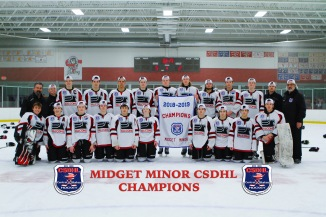 CSDHL Midget Minor Champions - Falcons