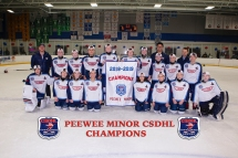 CSDHL Pee Wee Minor Champions - Jets