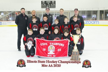 Chicago Bruins - Youth Tier II 8U AA Champions Photo Credit: Photos By Sully